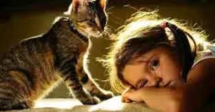 Photo of العلاقة بين أمراض الصدر وتربية الحيوانات وأهمية تربية القطط كإجراء وقائي