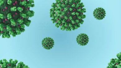 Photo of تشخيص فيروس كورونا خطوة بخطوة ( اكلينيكيا ، معمليا ، اشعات)