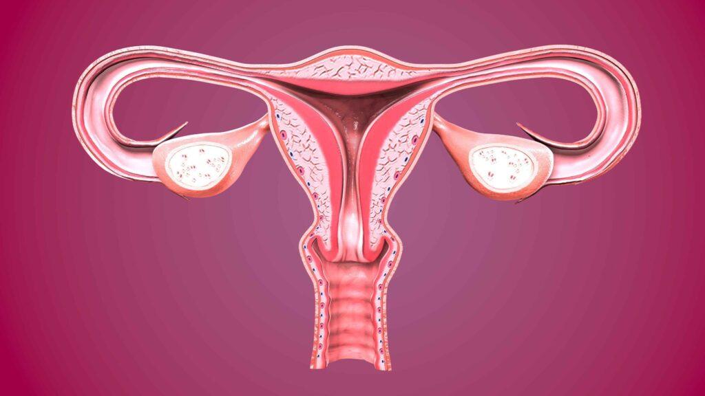 سرطان عنق الرحم والتطعيم