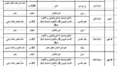 Photo of جدول التطعيمات الإجبارية في مصر بعدتحديثه بالتفاصيل