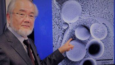 Photo of جائزة نوبل في فوائد الصيام