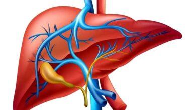 Photo of تحليل وظائف الكبد | ماذا تعرف عن تحليل وظائف الكبد ؟